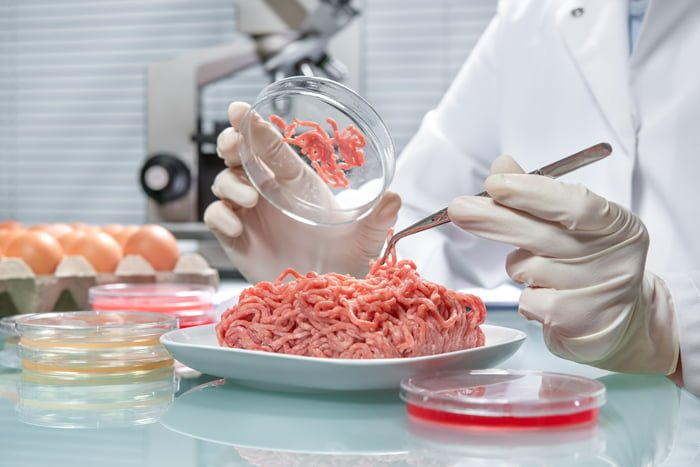 inspecting-meat-in-laboratory