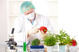 researcher-holding-vegetable