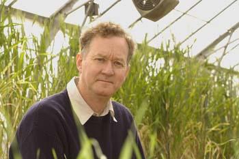Professor Peter Langridge named 2016 ATSE Fellow