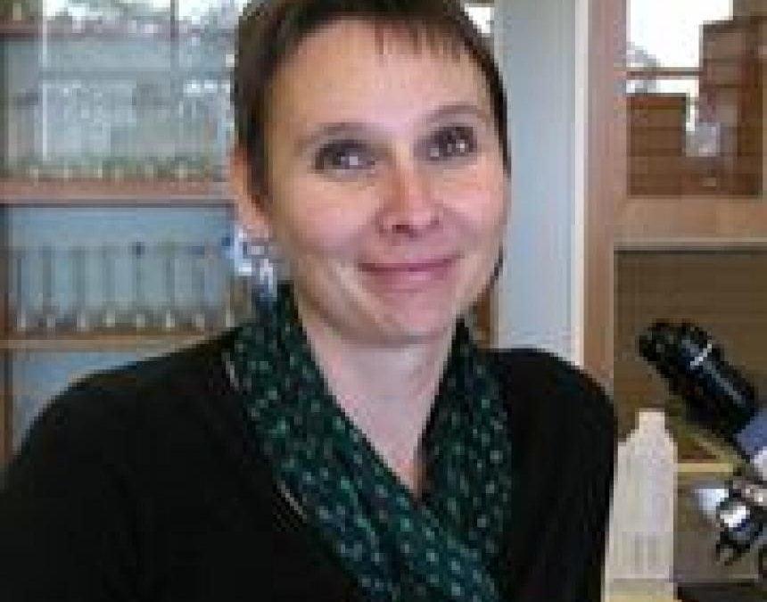 Teaching prize for Dr Beth Loveys