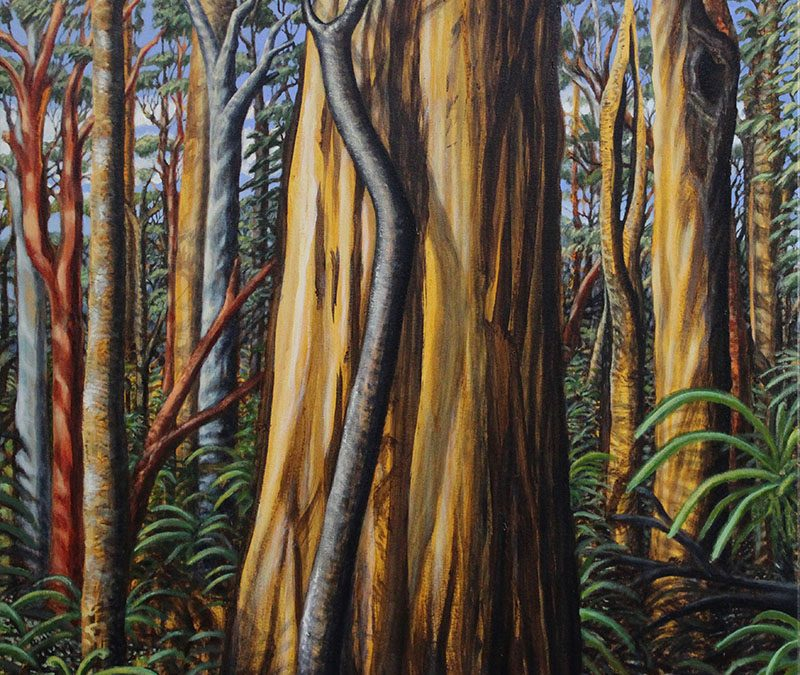 Art Exhibition at Urrbrae House – The Light and Breath of Trees