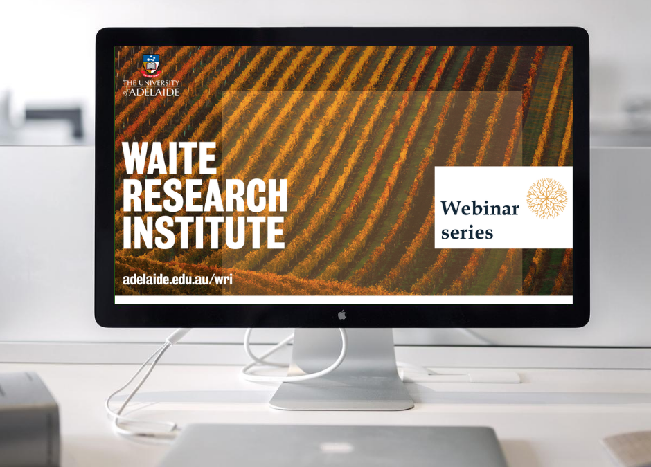 WRI Research Webinars