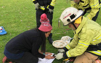 MFS magpie rescue on campus