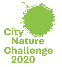City Nature Challenge – Adelaide 2020