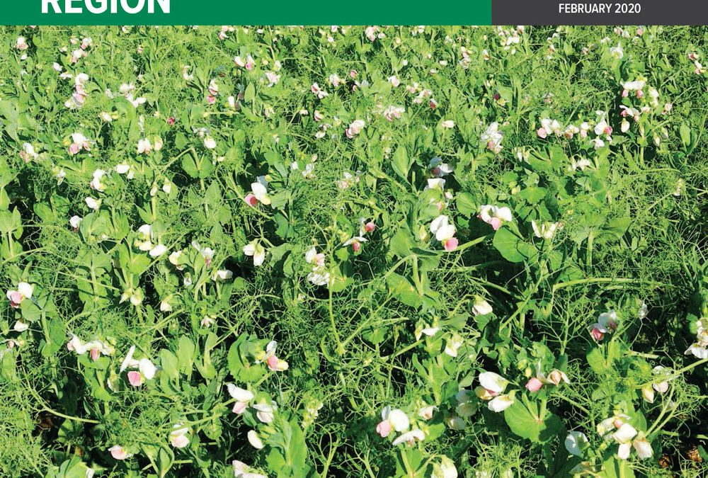 Support for growers eager to capture crop yield potential