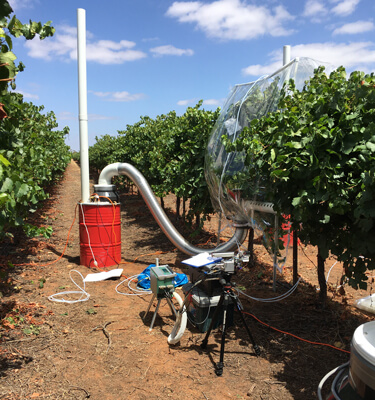 Precision watering for Riverland vineyards