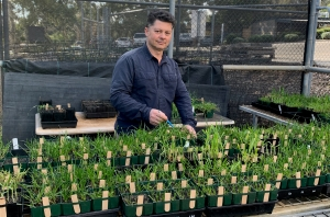 Testing reveals need to control herbicide resistance